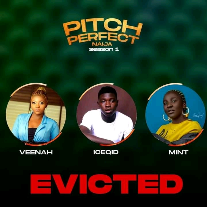 Three housemate have been evicted from pitch perfect naija show