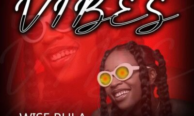Wise Rula Ft YCB King - vibes